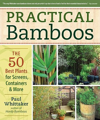 Practical Bamboos By Whittaker, Paul
